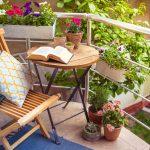 Kwiaty balkonowe – jakie rośliny na zacienione, a jakie na nasłonecznione balkony