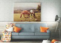 Nasze szkapy: obrazy koni inne, niż się spodziewasz